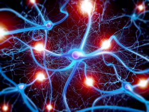 Electricity in the nervous system